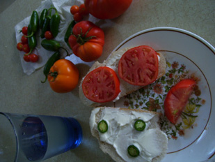 tomato-plate_1001-12pct.jpg